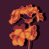 Vector illustration with flowers on the dark background Stock Photos