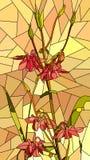 Vector illustration of flowers red columbine. Stock Photo