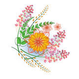 Vector illustration. flowers on a white background Stock Images