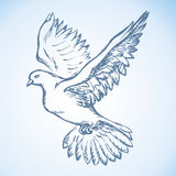 Vector illustration Flying dove Royalty Free Stock Photo