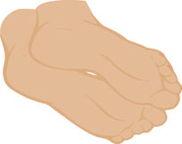 vector illustration of a foot Royalty Free Stock Photography