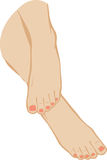 vector illustration of a foot of feet Royalty Free Stock Image
