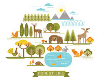 Vector illustration of forest life. Stock Images