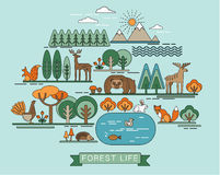 Vector illustration of forest life. Royalty Free Stock Photography