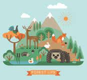 Vector illustration of forest life. Royalty Free Stock Photo