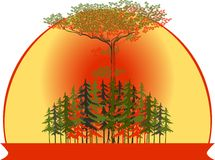 Vector illustration of a forest at sunset Royalty Free Stock Photos