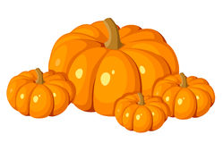 Vector illustration of four orange pumpkins. Royalty Free Stock Photo