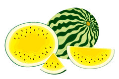 Vector illustration of , fresh, whole watermelon, half and slices of yellow watermelon Stock Images