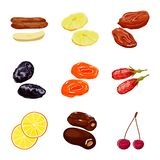 Vector design of fruit and dried  logo. Set of fruit and food  stock symbol for web. Vector illustration of fruit and dried  icon. Collection of fruit and food stock illustration