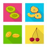 Vector illustration of fruit and dried  icon. Set of fruit and food  vector icon for stock. Isolated object of fruit and dried  symbol. Collection of fruit and stock illustration