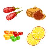 Vector design of fruit and dried  sign. Set of fruit and food  vector icon for stock. Vector illustration of fruit and dried  logo. Collection of fruit and food stock illustration