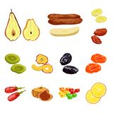 Vector design of fruit and dried  sign. Collection of fruit and food  vector icon for stock. Vector illustration of fruit and dried  logo. Set of fruit and food royalty free illustration
