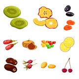 Vector design of fruit and dried  symbol. Set of fruit and food  vector icon for stock. Vector illustration of fruit and dried  sign. Collection of fruit and royalty free illustration