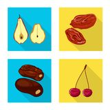Vector design of fruit and dried  symbol. Collection of fruit and food  vector icon for stock. Vector illustration of fruit and dried  sign. Set of fruit and vector illustration