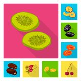 Vector design of fruit and dried  icon. Set of fruit and food  stock vector illustration. Vector illustration of fruit and dried  symbol. Collection of fruit stock illustration