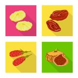 Vector illustration of fruit and dried  symbol. Set of fruit and food  vector icon for stock. Isolated object of fruit and dried  sign. Collection of fruit and royalty free illustration