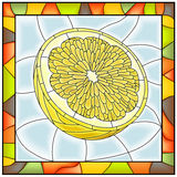 Vector illustration of fruit yellow lemon. Stock Image