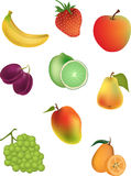 Vector Illustration of Fruits Stock Images
