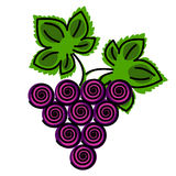 Vector illustration of ftuit. Decotarive ornamental blue grape with leaves  on the white backdrop Royalty Free Stock Image