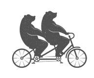 Vector Illustration Fun Bear Royalty Free Stock Image