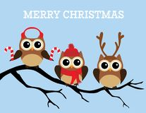 Vector Christmas Owls Sitting In The Tree. Vector illustration of fun Christmas owls. Merry Christmas background. Owls sitting in the tree vector illustration
