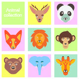 Vector illustration of funny animal icon set Royalty Free Stock Photo