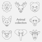 Vector illustration of funny animal icon set Royalty Free Stock Photography