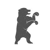 Vector Illustration Funny Bear Royalty Free Stock Image
