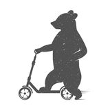 Vector Illustration Funny Bear Stock Photo