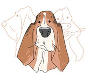 Vector illustration funny dog thoroughbred on a white background. Drawing of Basset Hound Royalty Free Stock Photography