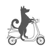 Vector Illustration Funny Dog stock illustration