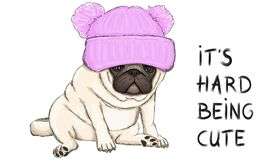 Vector illustration of funny pug puppy dog sitting down with pink knitted hat and text its hard being cute. Colorful vector illustration of funny pug puppy dog royalty free illustration