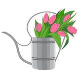 Vector illustration of a garden watering can Royalty Free Stock Photography