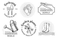 Gardening vintage ypography compositions. Vector illustration of gardening typography compositions with hand drawn objects: gloves, pruner, rain boots, fork and Royalty Free Stock Photography