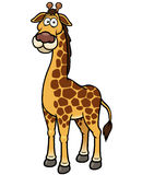Giraffe cartoon Stock Images