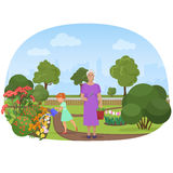 Vector illustration of the girl watering flowers with the grandmother in the own garden. Stock Photo