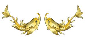 Golden Fishes Royalty Free Stock Photo
