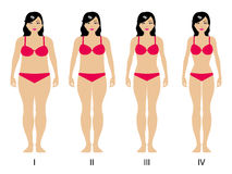 Vector illustration of gradual weight loss Stock Images