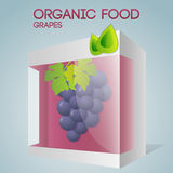 Vector illustration of grapes in packaged Stock Photo