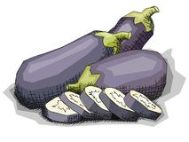 Vector illustration of drawing vegetable eggplant. Stock Images