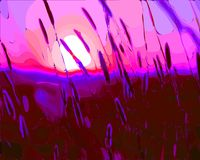 Vector illustration of grass spikelets at sunset. . royalty free illustration