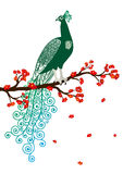 Vector illustration of green abstract peacock on the red blossom tree branch Royalty Free Stock Photos
