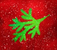 Green Christmas spruce branch silhouette. Vector illustration of green Christmas spruce branch silhouette on red glitter grunge background Royalty Free Stock Image