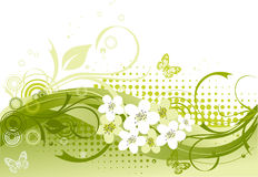 Vector illustration of green floral Royalty Free Stock Image