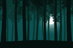Vector illustration of a green forest with a moonlight Royalty Free Stock Photos