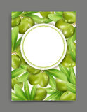 Vector illustration with green olives and leaf isolation on the. White background, frame. Element for modern design, advertising for sales, template,banner vector illustration