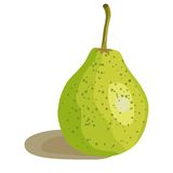 Vector illustration of a green pear. EPS 10 Royalty Free Stock Image