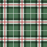 Vector illlustration of green tartan fabric patter Stock Images