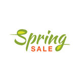 Vector illustration of green Spring Sale typographic calligraphic lettering text isolated on white background. Stock Photo