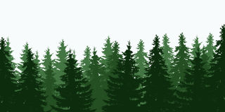 Vector illustration of green tree forest top. Pings under a gray sky, isolated with space for text Royalty Free Stock Photo